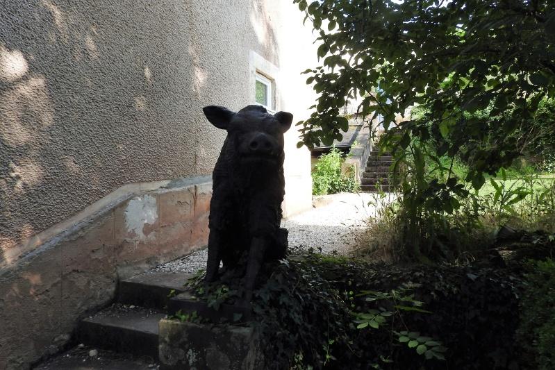 Une balade en sud Aveyron Dscn3339