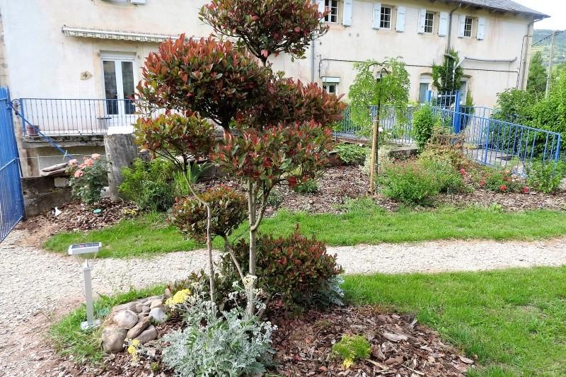 Une balade en sud Aveyron Dscn3356
