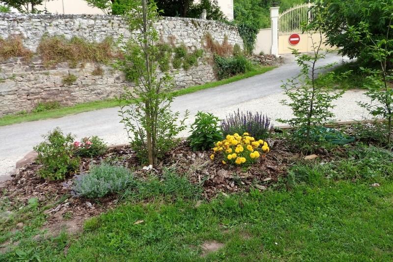 Une balade en sud Aveyron Dscn3357