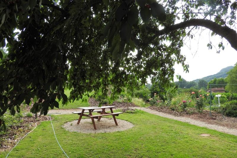 Une balade en sud Aveyron Dscn3358