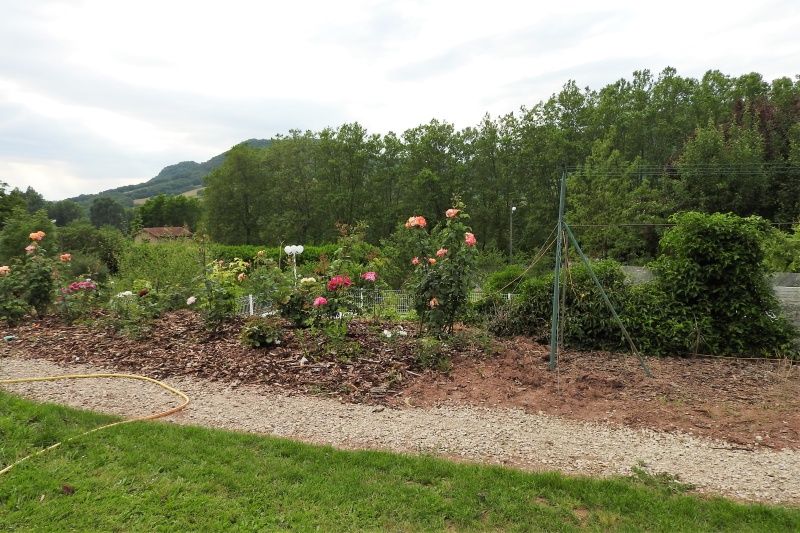 Une balade en sud Aveyron Dscn3362
