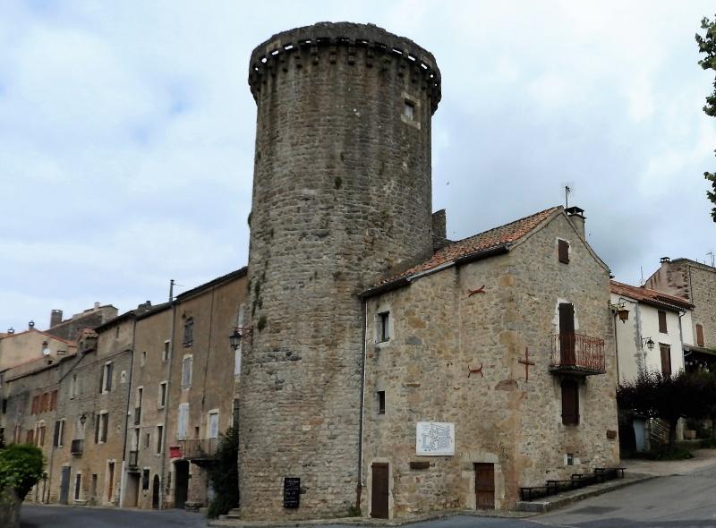 Une balade en sud Aveyron Dscn3433