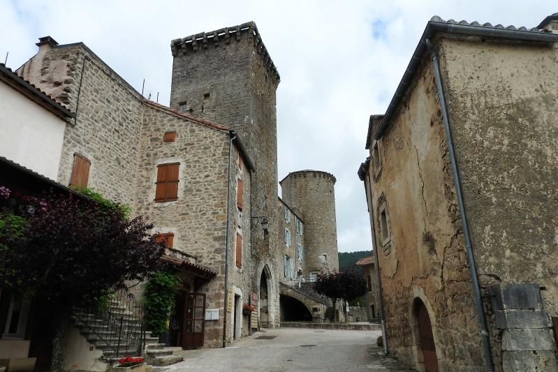Une balade en sud Aveyron Dscn3436