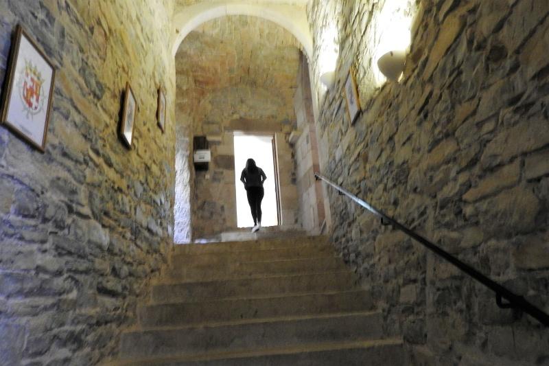 Une balade en sud Aveyron Dscn3461