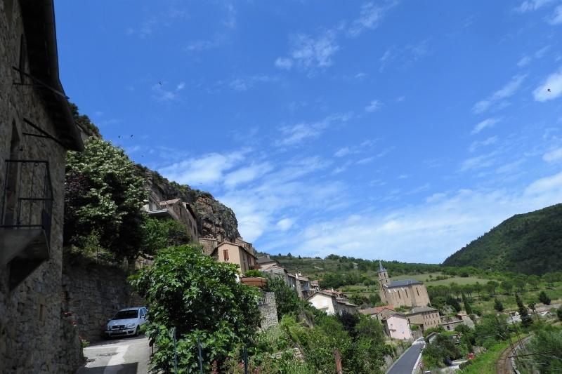 Une balade en sud Aveyron Dscn3555