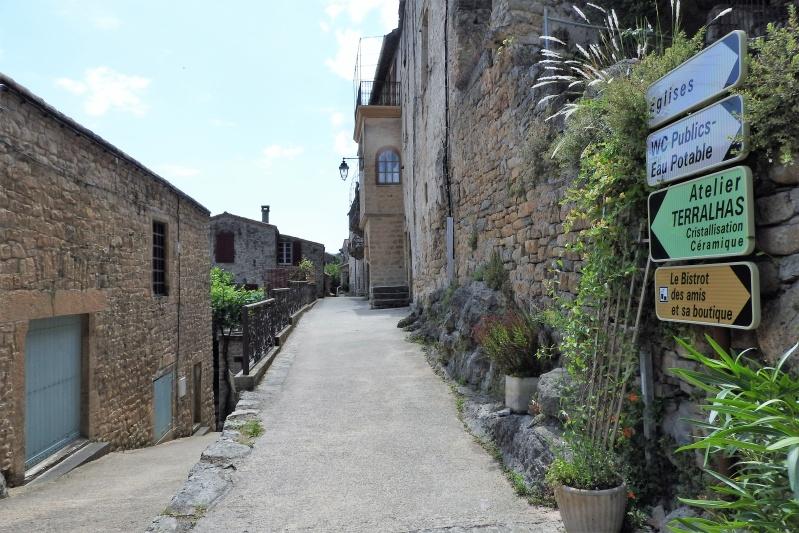 Une balade en sud Aveyron Dscn3556