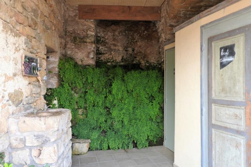 Une balade en sud Aveyron Dscn3557