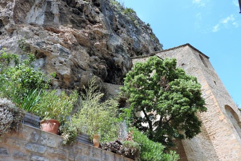 Une balade en sud Aveyron Dscn3564