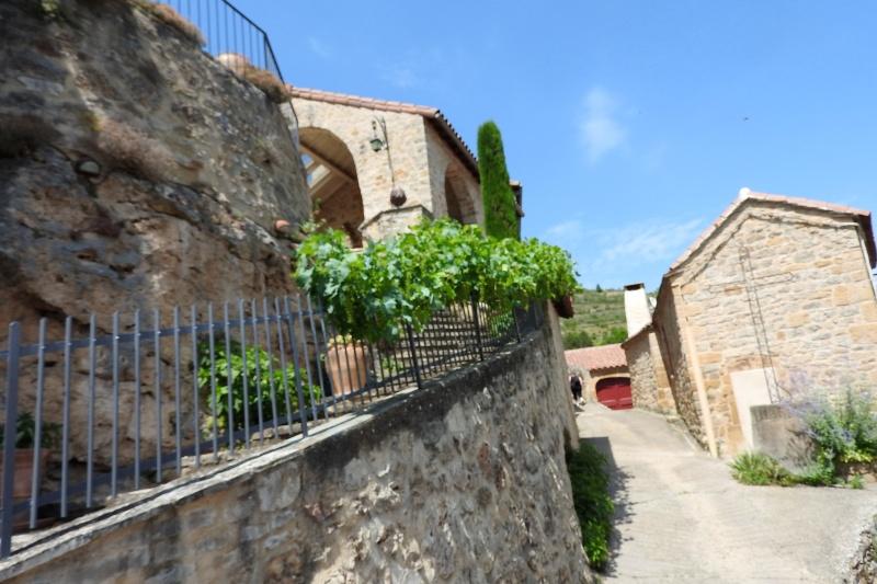 Une balade en sud Aveyron Dscn3577