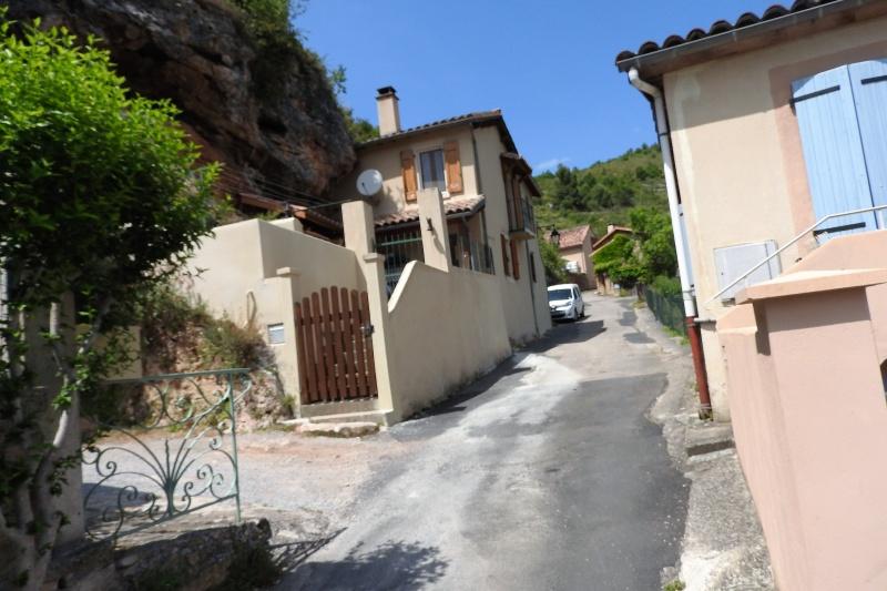Une balade en sud Aveyron Dscn3583