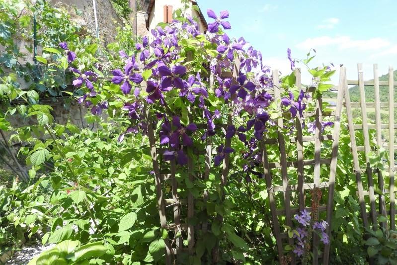 Une balade en sud Aveyron Dscn3593