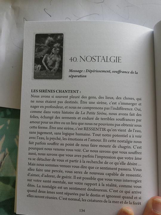 Présentation: Les Anges et Nous C611
