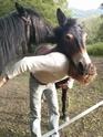 VIOLETTE dite PETALE - ONC Mule née en 2006 - adoptée en octobre 2012 par Jean Img_2015