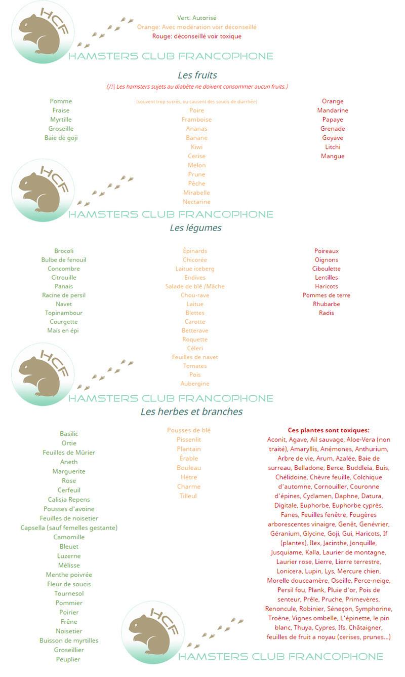 Fiche: Liste d'aliments Alimen11