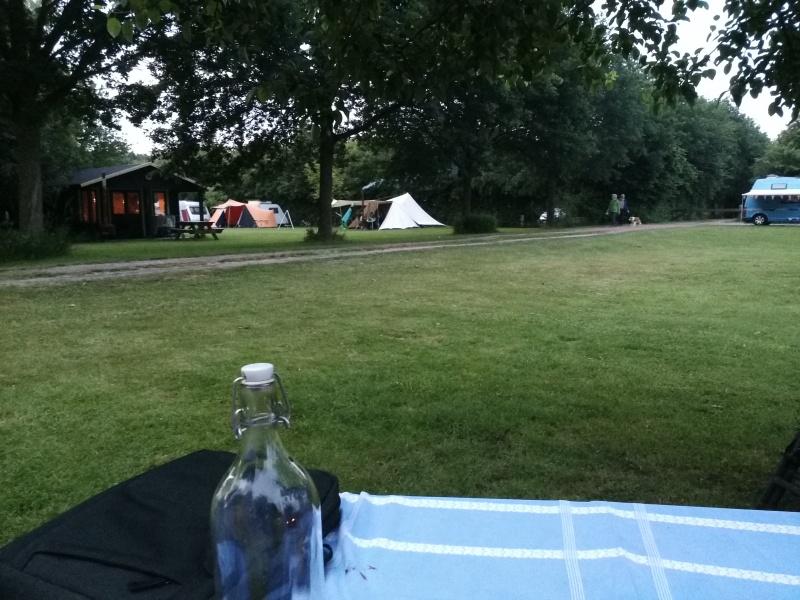 Pays Bas: De Haverkamp Img_2016