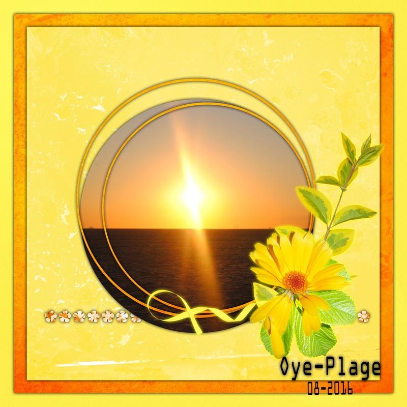 épreuve n° 43 : jaune Oye-pl10