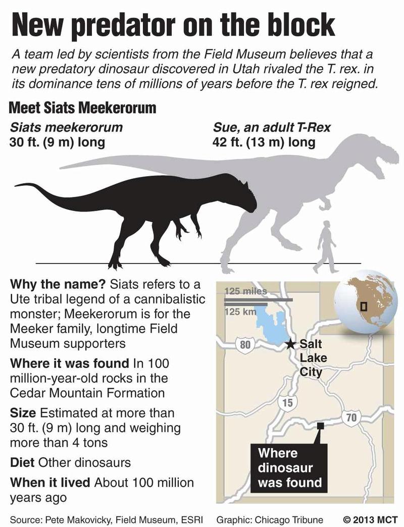 Dinosaur Size Charts Sue_an10