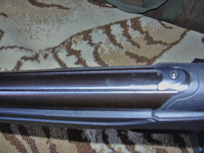 Lunette pour air comprimé Dscn1211