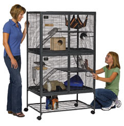 Critter Nation Cage ? Critte10
