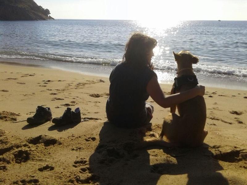 Camping..... paradis des chiens Chienp10