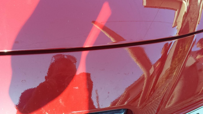 Vernice a buccia d'arancia  13460711
