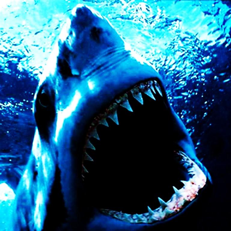 image mars/saturne/pluton Shark10