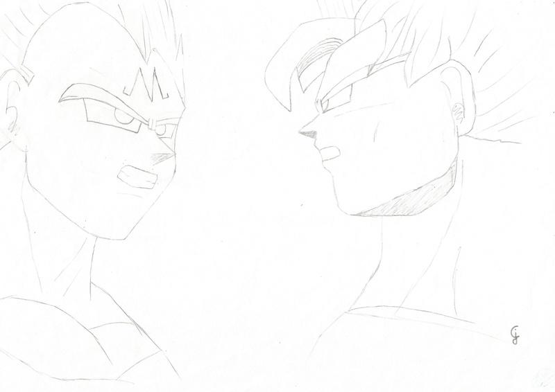 La galerie de Shura Goku_e10