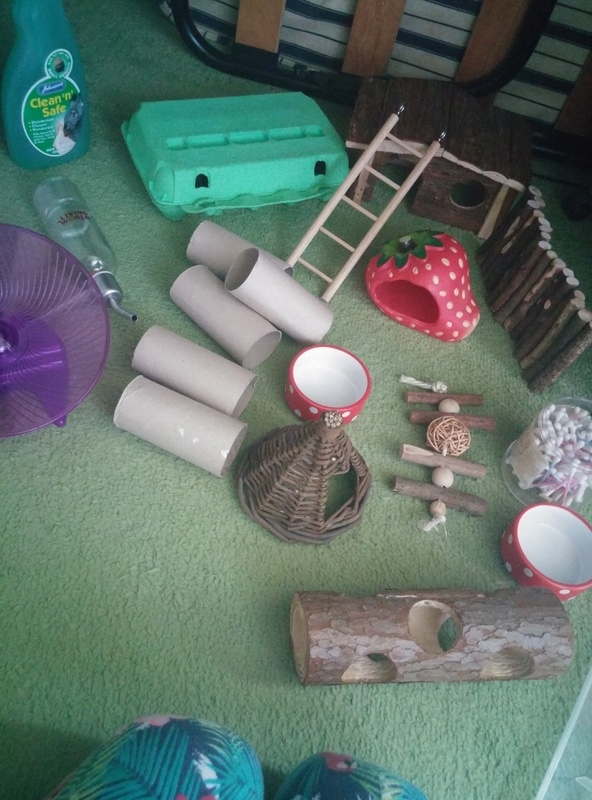 Play pen and mouse items! Pic_1210