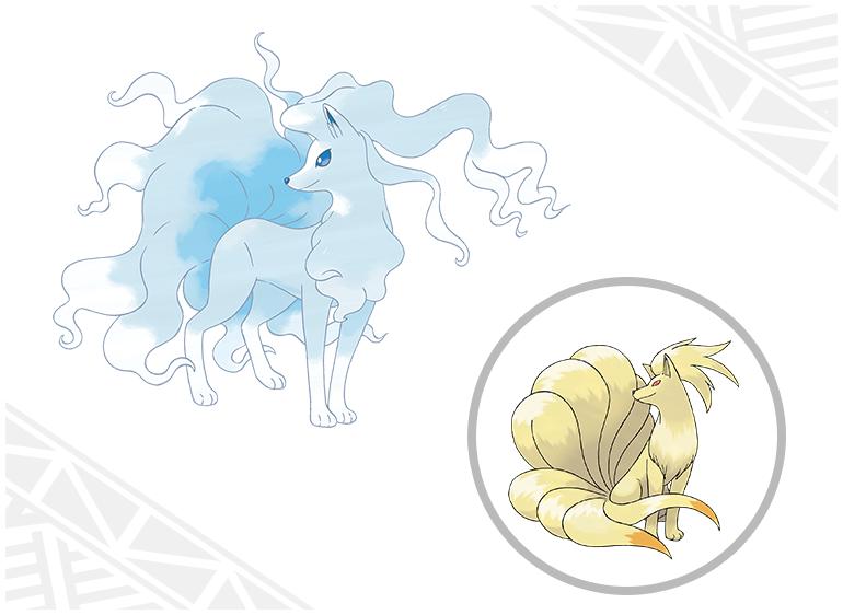 [Sun&Moon] (01-08-2016)  Introduction des Formes d'Alola et des capacités Z pour Pokémon Soleil et Pokémon Lune ! Feunar11