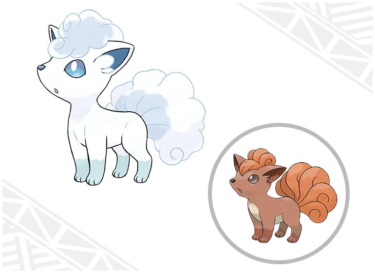 [Sun&Moon] (01-08-2016)  Introduction des Formes d'Alola et des capacités Z pour Pokémon Soleil et Pokémon Lune ! Goupix10