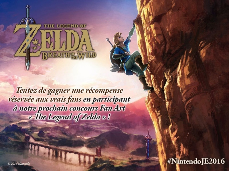[Evènement] Un concours Fan Art « The Legend of Zelda » arrive bientôt sur le Facebook LegendofZeldaFrance Zeldac13