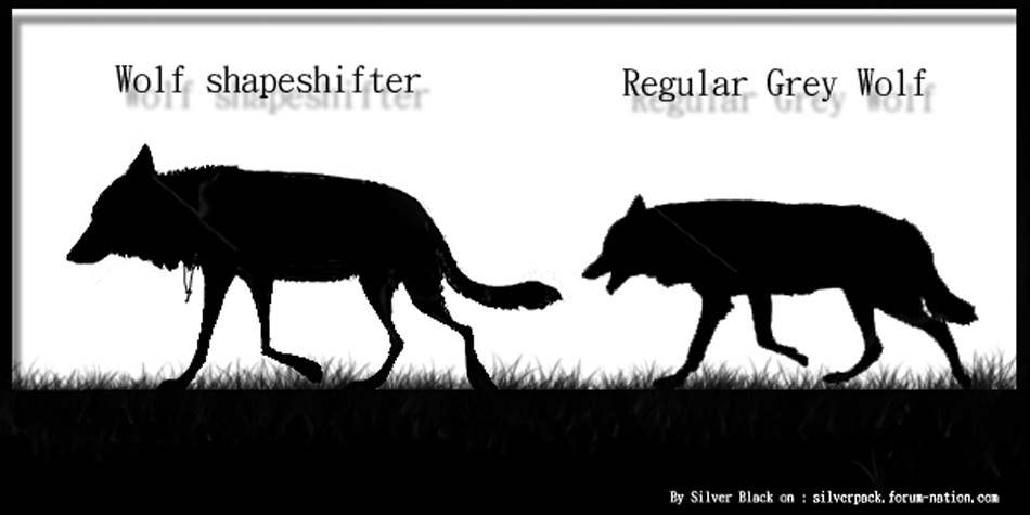 How to spot a wolf Shapeshifter ? ( UPDATED )  Shifte11
