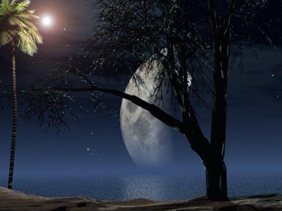Au clair de Lune - Page 2 Bqwkxf10