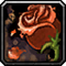 Les vertus des plantes, tome I : Apprenti Inv_je10