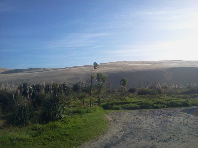 mon voyage en Nouvelle- Zélande (Aotearoa : le pays du long nuage blanc) - Page 2 2016-016