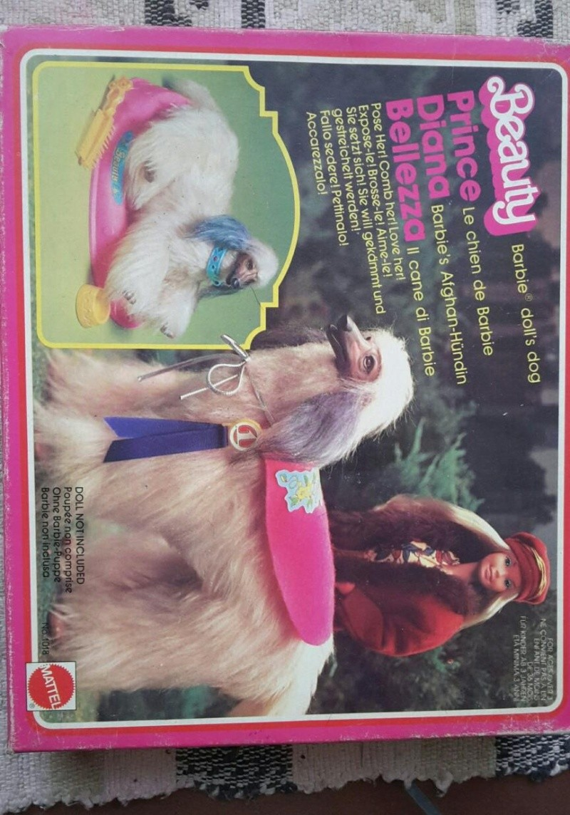 barbie camper, cucina, camera da letto, piscina, cavallo Dallas e cane Bellezza Bellez15