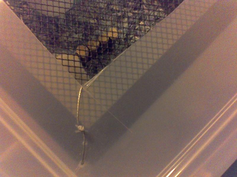 Bin cage questions Win_2055