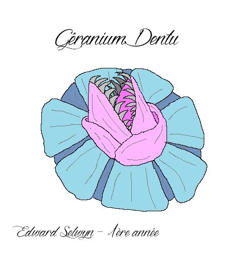 [11 Septembre 1997] Le Géranium Dentu Gyrani10