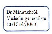 Rapport RP MINOUCHE61 [CHU] - Page 2 Tampon11