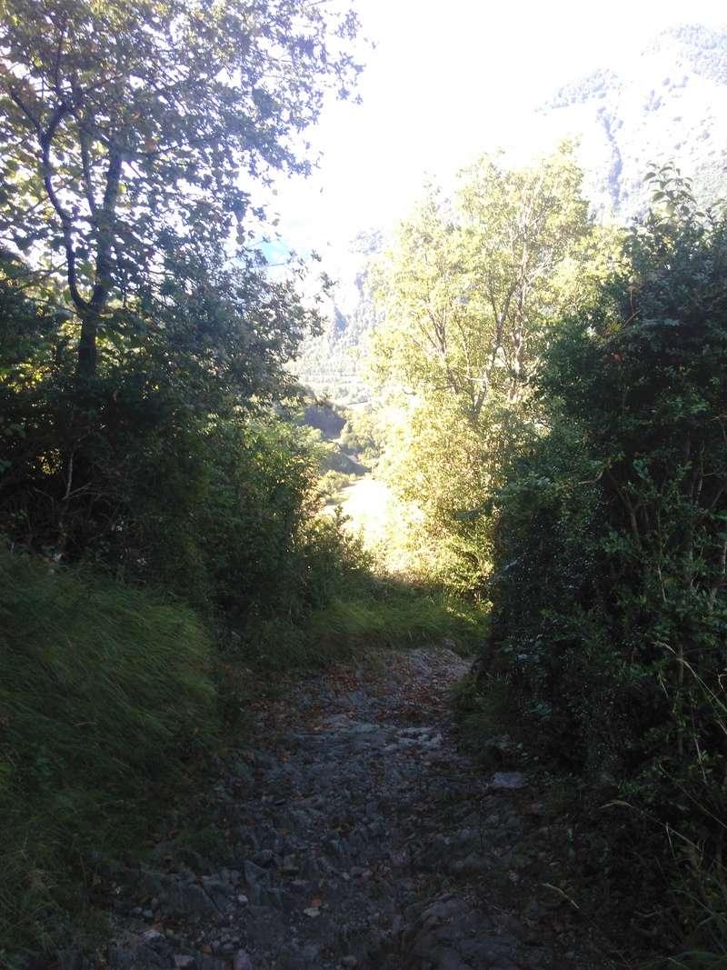 Vallée d'Ossau (64) Img_2033
