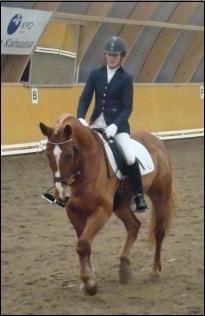 Horses&riding Image12