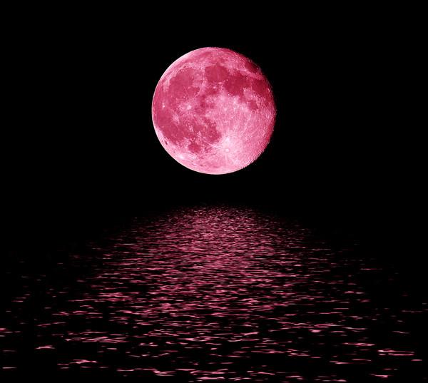 Al Loar Limestra - La Lune Pourpre
