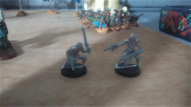 [kielran] Ost de Greguael et ses alliées exodites, arlequins et corsairs, armee de Kielran - Page 2 Dsc_0019