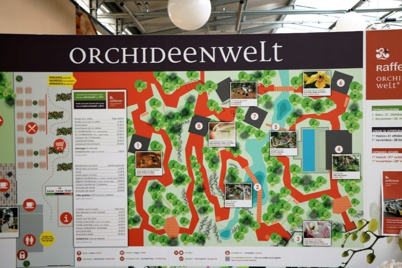 Raffeiner Orchideenwelt in Südtirol Img_4512