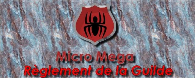 [Règlement] Fonctionnement de la Guilde Micro Mega Micro_13