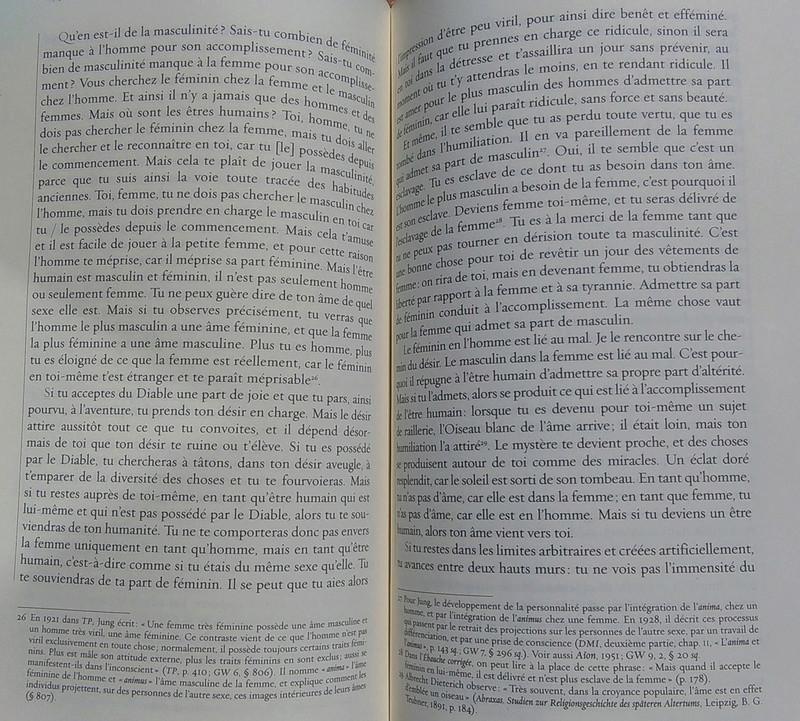 frontière réalité /fantasme - Page 2 Jung_l11