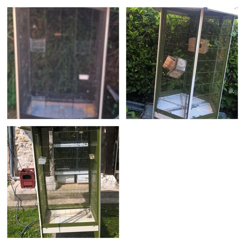 vente de cages Volier10