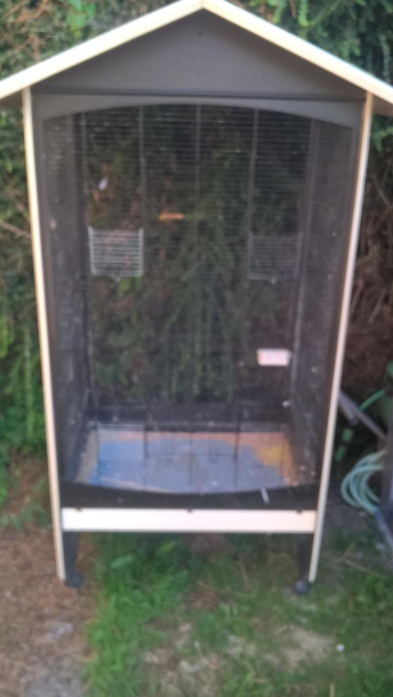 vente de cages Volier11