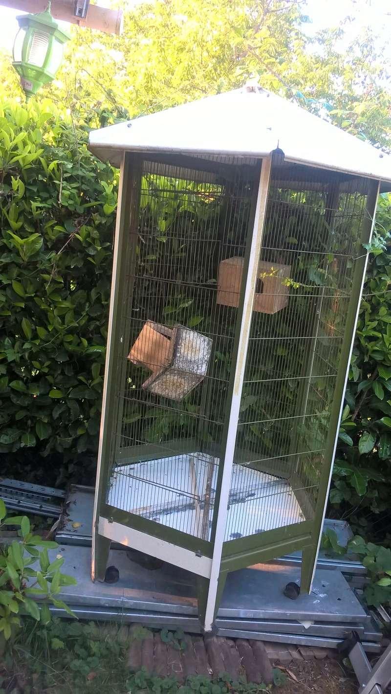 vente de cages Volier14