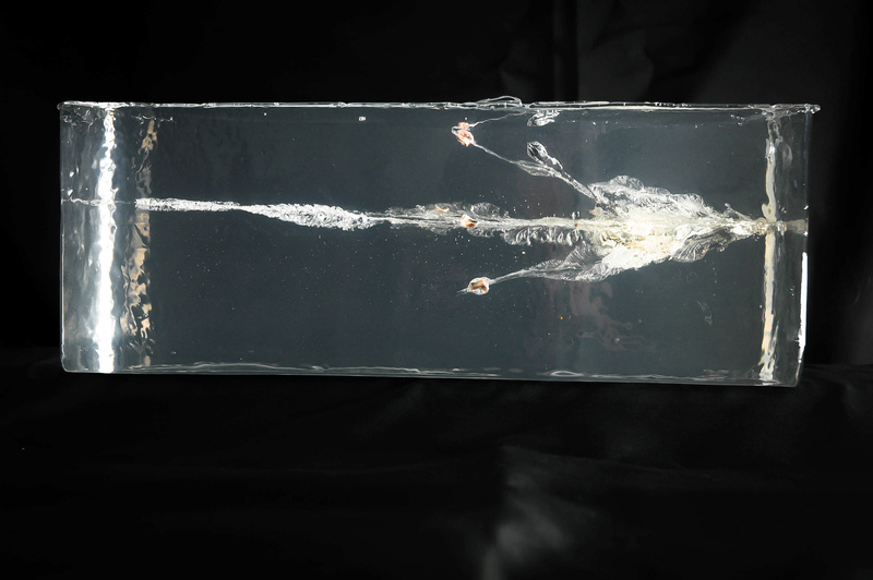 Cutting edge bullets 160gr_10